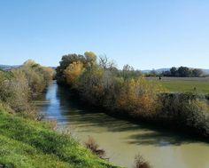 Il fiume Ombrone 50 anni dopo