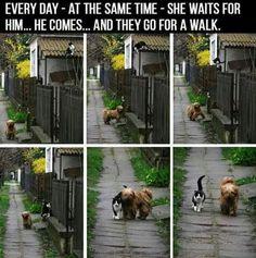Que bonita amistad