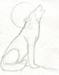 How to draw a howling wolf realistic drawings, easy drawings sketches, Wolf Sketch, Drawing Sketches, Art Sketches, Drawing Ideas, Drawing Guide, Sketching, Body Sketches, Drawing Tutorials, Drawing Art