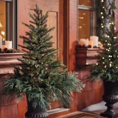 """Here's the quick way to fill an urn perfectly for the holidays: our Spruce Tree Urn Filler with Overflow. It comes in two pieces. A faux mixed pine  tree portion stakes into your urn, and is pre-lit with 70 warm white mini-lights. Then for a finishing touch, add the extra """"overflow"""" unlit  faux juniper branches around the bottom of the tree portion, to gracefully cover the open top of your urn. Simple, lifelike beauty. Comes with a three-way  timer. Requires two D batteries (not included) with a Christmas Tree In Urn, Outdoor Christmas Tree Decorations, Christmas Planters, Magical Christmas, Modern Christmas, Rustic Christmas, Christmas Home, Halloween Decorations, Christmas Ideas"""