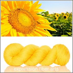 Expression Fiber Arts, Inc. - SERENE SUNFLOWER - 'SOCKLOVE' Limited Edition SOCK YARN, $24.00 (http://www.expressionfiberarts.com/products/serene-sunflower-socklove-limited-edition-sock-yarn.html)