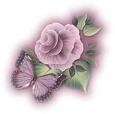 Roze vlinder op Roze Roos