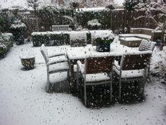 My backyard (Wijchen, NL)