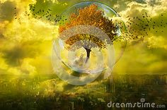 The Rebirth Of Nature - Download From Over 32 Million High Quality Stock Photos, Images, Vectors. Sign up for FREE today. Image: 50625211
