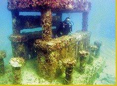 Jose Cuervo underwater bar Miami --- dive site: sunken bar for artificial reef Miami Dade County, Miami Beach, Snorkeling, Scuba Diving, Under The Sea, Underwater, Lost, Bar, Adventure