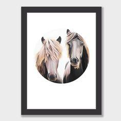 """Mortimer & Clemente"" Horse Circle Art Print by Margaret Petchell NZ Art Prints, Design Prints, Posters & NZ Design Gifts | endemicworld"