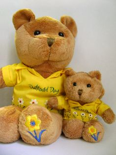 #Daffodil day teddy bears. Aren't they cute!?