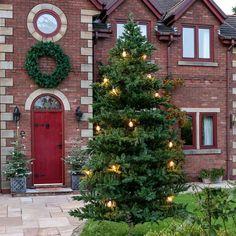 Christmas Lights, Christmas Tree, Diy And Crafts, Display, Holiday Decor, Inspiration, Home Decor, Christmas Rope Lights, Teal Christmas Tree
