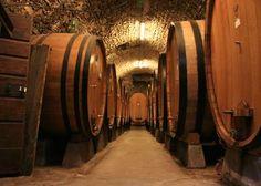 Wine Cellar - Wijnkelder