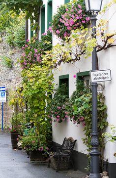 Sinzig (Rheinland-Pfalz)