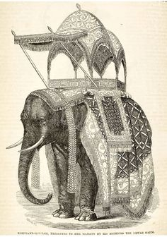 Elephant howdah, presented to her majesty by the Newab Nazim, The Illustrated Exhibitor Guide to the Great Exhibition, 1851 Baroda State. Larp, Elephant Illustration, Antique Illustration, India Art, Elephant Art, Crystal Palace, World's Fair, British Library, Pictures To Paint