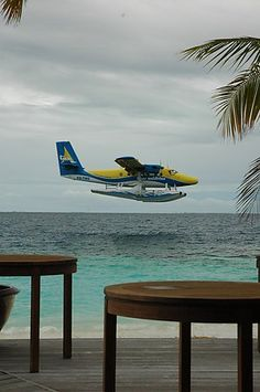 Seaplane landing -- we eloped to the Maldives!