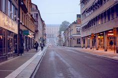 Saiba qual é o segredo da Suécia para reaproveitar 99% do lixo Mesmo que hoje a Suécia seja uma referência internacional em manejo dos resíduos, nem sempre foi assim.