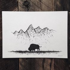 Nature and American West art + products by Sam Larson Cool Sketches, Drawing Sketches, Art Drawings, Drawing Tips, Sketching, Sam Larson, Bison Tattoo, Buffalo Tattoo, Buffalo Animal