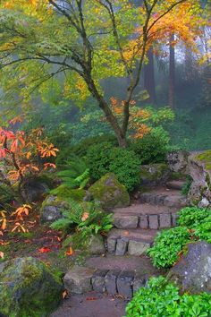 Amazing Garden Path ideas. Planning fall colors for vertical gardens, raised beds, and container gardens.
