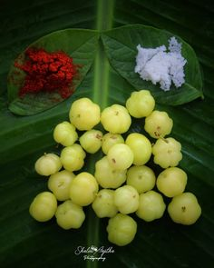 Image may contain: food Indian Food Recipes, Vegetarian Recipes, Cooking Recipes, Kerala Food, Fruit Photography, Food Garnishes, Exotic Fruit, Indian Dishes, Street Food