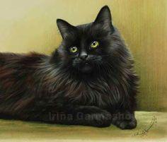Black Cats In Green Tones Irina Garmashova Cats