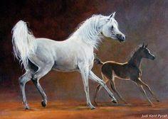 Horse Oil Painting, Artist Painting, Arabian Art, Arabian Horses, Colored Pencil Artwork, Horse Artwork, Horse Face, Breyer Horses, Equine Art