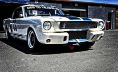 67 shelby mustang