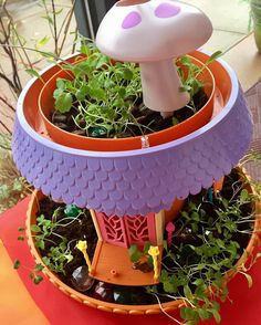 Here's a happy sight for a dreary day. Our Fairy Garden is really growing! My Fairy Garden, Growing Plants, Planter Pots, Happy, Instagram Posts, Plant Pots, Happiness