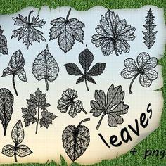 Photoshop brushes- leaves. *
