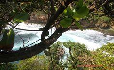 Ngitun : Journey to Private Beach and Hill in Yogyakarta