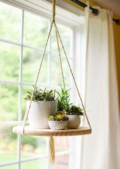 Greenery plantes