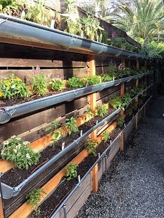 When space is precious, which is common in our urban neighborhood, you have to get creative. We built this vertical garden on the south facing fence next to the driveway. Finding a source for rain …