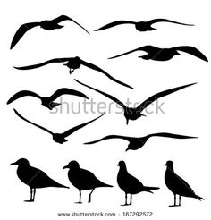 stock-vector-gull-silhouette-vector-167292572.jpg 450×470ピクセル