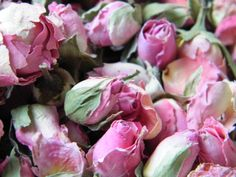Pretty mid-pink rose buds from daisyshop.co.uk