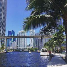 Miami city Photos series 8 – Pictures of Miami city : South Beach Florida, Florida City, South Beach Miami, Florida Vacation, Florida Travel, Florida Beaches, Vacation Spots, Florida Usa, Miami City