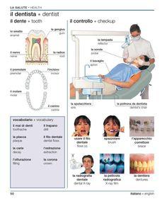 Learning Italian - Dentist: