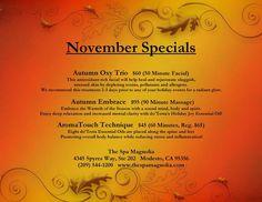 The Spa Magnolia November 2014 Specials Premier Luxury Day Spa in Modesto, Ca