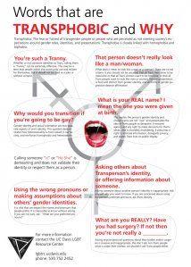 Great Transgender Awareness infographic