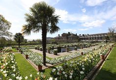 Princess Diana memorial garden opened at Kensington Palace April, 2017.