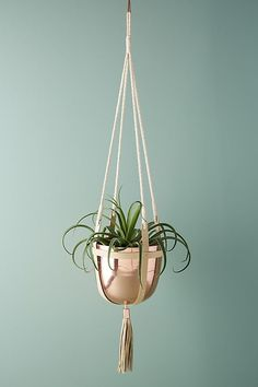 Slide View: 1: Ari Hanging Pot