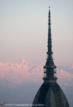 Turin, Mole, Empire State Building, City, Travel, Places, Italy, Mole Sauce, Viajes