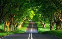 Warzim-gambar-wallpaper-pemandangan-alam-pedesaan (1).jpg - Download at 4shared