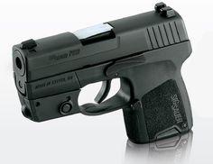 Sig P290. Love this little gun. Dog safety,lol.
