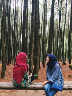 Pine Forest, Yogyakarta. Places To Travel, Places To See, Pine Forest, Yogyakarta, Java, Tourism, Adventure, Destinations, Viajes