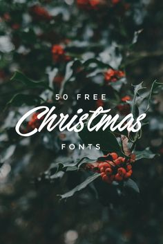 50 Free Christmas Fonts To Give Your Designs A Holiday Twist | @canva