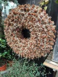Jul 2015 My stars! All those itty bitty pine cones. Pine Cone Art, Pine Cone Crafts, Pine Cones, Christmas Wreaths, Christmas Decorations, Christmas Ornaments, Acorn Wreath, Berry Wreath, Nature Crafts