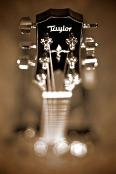 Taylor Guitars are amazingg! I would love to have this for my guitar collection! ~~maybe Booney B will decide one day he wants to play with me!