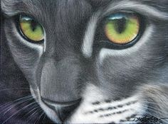 Cats Painting - Grey Lady by Darren Robinson