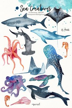 Discover recipes, home ideas, style inspiration and other ideas to try. Sea Creatures Drawing, Creature Drawings, Clipart, Shark Drawing, Watercolor Whale, Watercolour, Watercolor Tattoos, Shark Art, Manta Ray