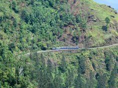 Darjeeling Himalayan Railway, Darjeeling, West Bengal