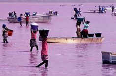Lake Retba or Lac Rose (meaning Pink Lake) is in Senegal. Lake Retba is under consideration by UNESCO as a World Heritage Site. The lake was often the finishing point of the Dakar Rally, before it moved to South America in 2009.