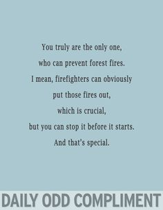 preventing forest fires
