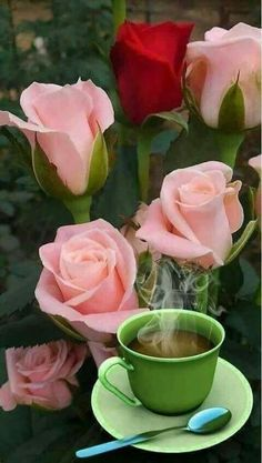 Beautiful Rose From My Heart Morning Rose, Good Morning Flowers, Coffee Love, Coffee Art, Coffee Break, Good Morning Coffee Gif, Flower Phone Wallpaper, Wallpaper Backgrounds, Beautiful Rose Flowers