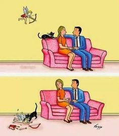 La gente con gatos no encuentra el amor.